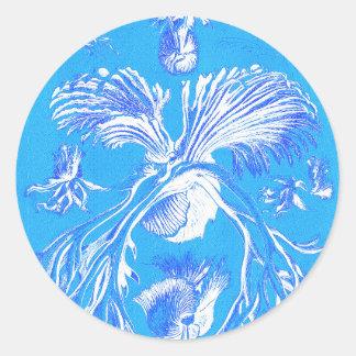 Haeckel-Filicinae Classic Round Sticker