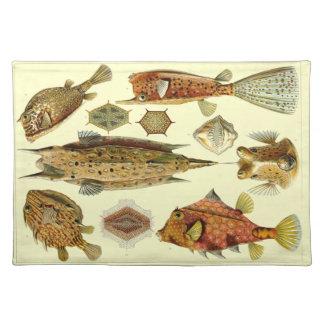 Haeckel Fish Placemat