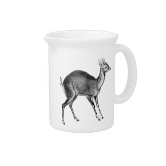 Haeckel Four Horned Deer Drink Pitcher