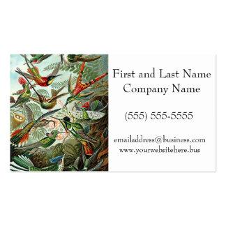 Haeckel Green Red Birds Design Business Card Template