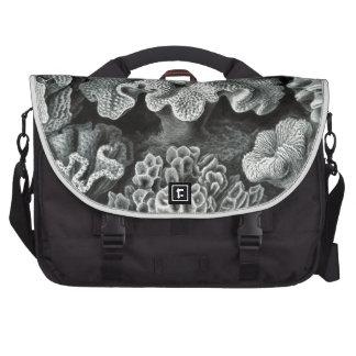 Haeckel Hexacoralla Computer Bag