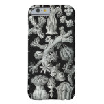 Haeckel iPhone 6 case - Gorgonida