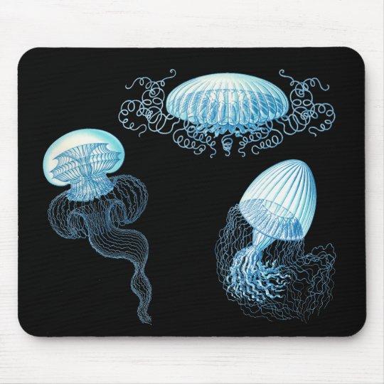 Haeckel Jellyfish Mouse Pad