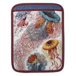 Haeckel Jellyfish Vintage Art iPad Sleeves