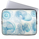 Haeckel Leptomedusae Laptop Computer Sleeves