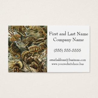 Haeckel Lizard Bearded Dragon Iguana Painting Business Card