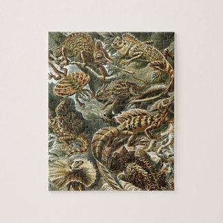 Haeckel Lizard Bearded Dragon Iguana Painting Puzzle