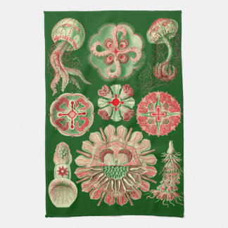 Haeckel Marine Jellyfish Illustration Red & Green Towel