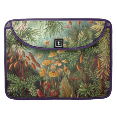Haeckel Muscinae Sleeve For MacBook Pro at Zazzle