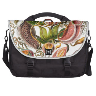 Haeckel Nepenthaceae Bag For Laptop