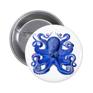 Haeckel Octopus Blue 2 Inch Round Button