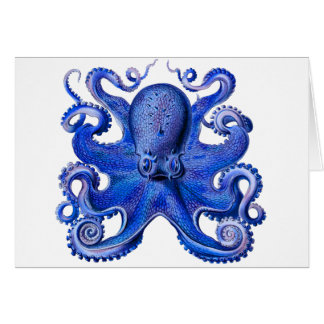 Haeckel Octopus Blue Card