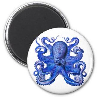 Haeckel Octopus Blue Refrigerator Magnets