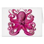 Haeckel Octopus Pink Cards