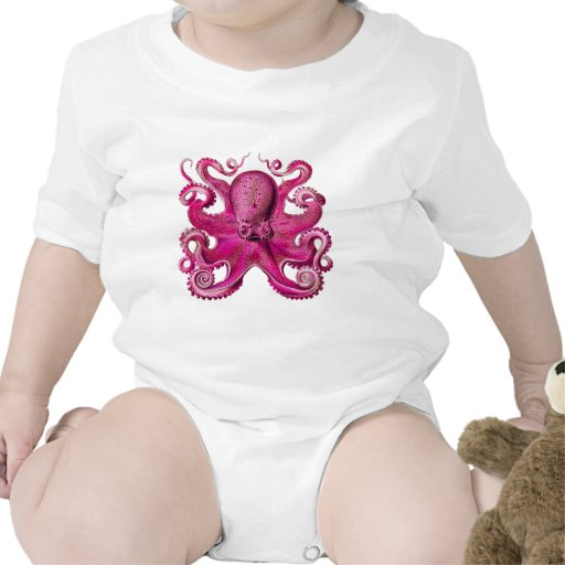 Haeckel Octopus Pink Creeper