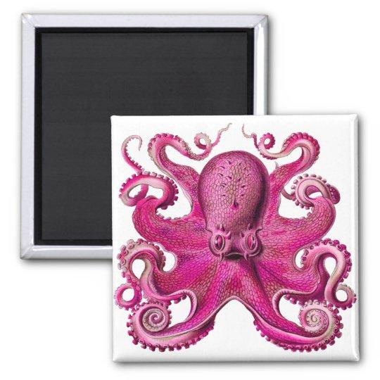 Haeckel Octopus Pink Magnet