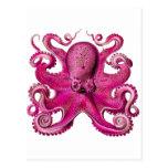 Haeckel Octopus Pink Postcard