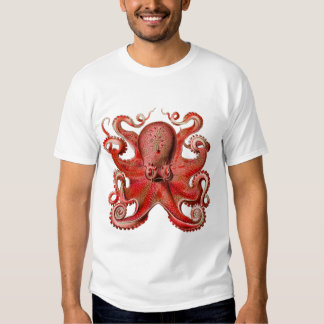 Haeckel Octopus Red Dresses