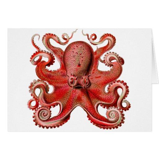 Haeckel Octopus Red Greeting Card