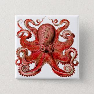 Haeckel Octopus Red Pinback Button
