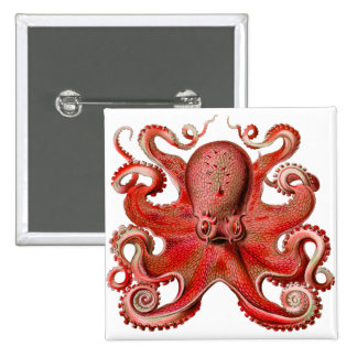 Haeckel Octopus Red Pinback Button