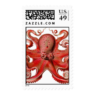 Haeckel Octopus Red Postage Stamps