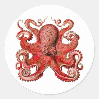 Haeckel Octopus Red Stickers