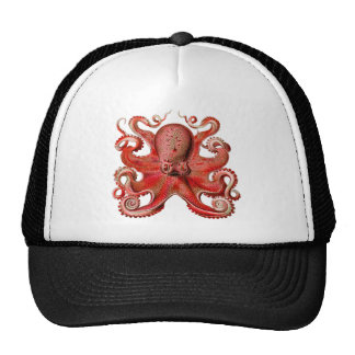 Haeckel Octopus Red Trucker Hat