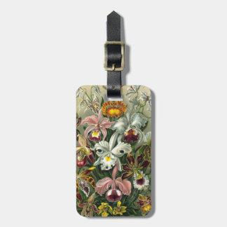 Haeckel Orchidae Bag Tag