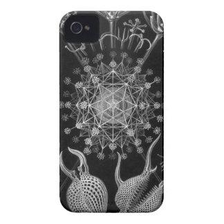 Haeckel Phaeodaria Carcasa Para iPhone 4 De Case-Mate