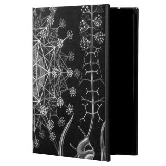 Haeckel Phaeodaria iPad Air Cover