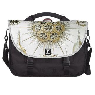 Haeckel Phaeodaria Laptop Bags