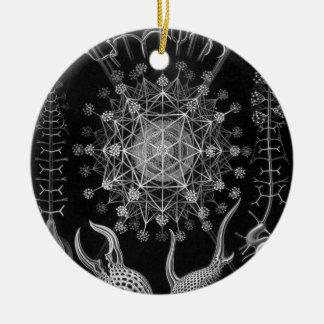 Haeckel Phaeodaria Christmas Tree Ornament