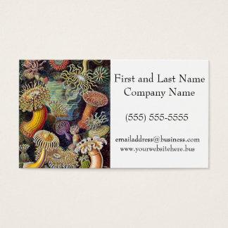 Haeckel Sea Anemone Ocean Life Painting Business Card