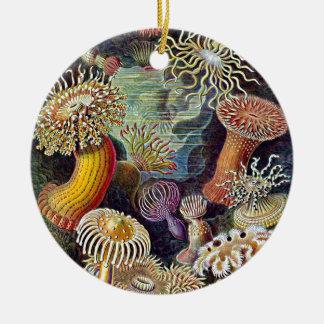 Haeckel Sea Anemone Ocean Life Painting Ceramic Ornament