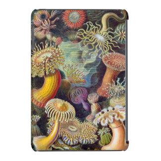 haeckel sea anemones iPad mini cover