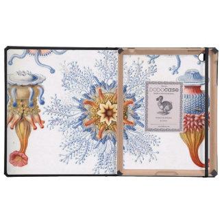 Haeckel Siphonophorae iPad Folio Cases