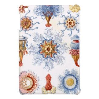Haeckel Siphonophorae iPad Mini Cases