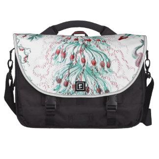 Haeckel Siphonophorae Laptop Computer Bag