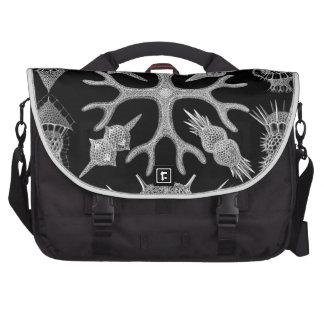 Haeckel Spumellaria Bag For Laptop