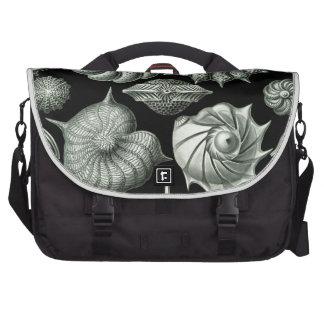 Haeckel Thalamophora Commuter Bag