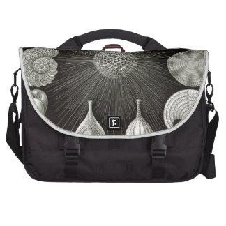 Haeckel Thalamphora Laptop Commuter Bag