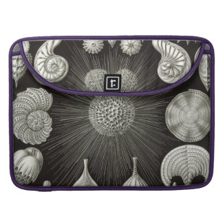 Haeckel Thalamphora Sleeve For MacBook Pro