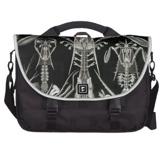 Haeckel Thoracostraca Bags For Laptop