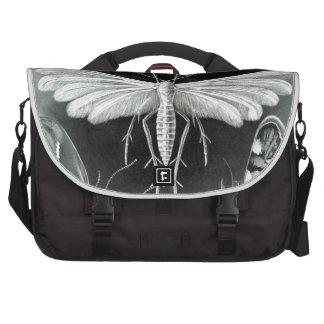 Haeckel Tineida Commuter Bags