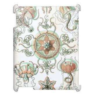 Haeckel Trachomedusae Cover For The iPad
