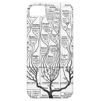Haeckel Tree of Life iPhone SE/5/5s Case