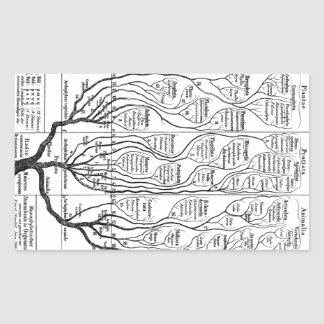 Haeckel Tree of Life Rectangular Sticker