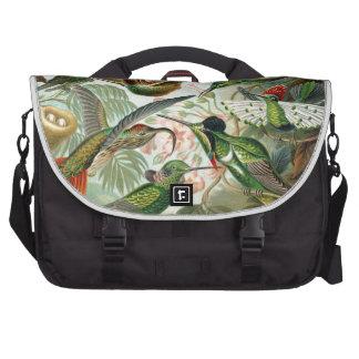 Haeckel Trochilidae Commuter Bags
