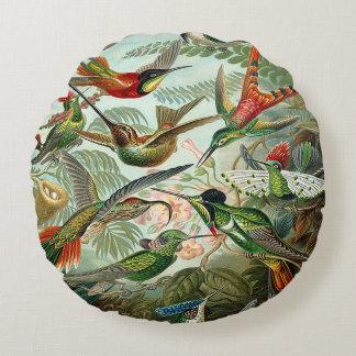 Haeckel Trochilidae Hummingbirds Round Pillow